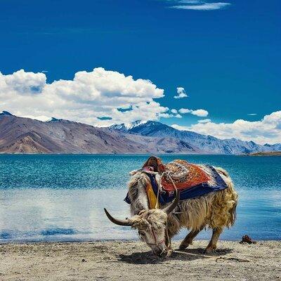 Amazing Ladakh Package from Leh