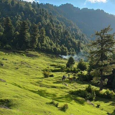 Heavenly Kashmir Package From Srinagar