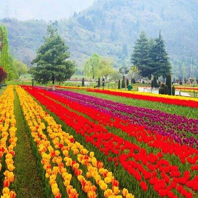 Jammu Kashmir Holiday Package